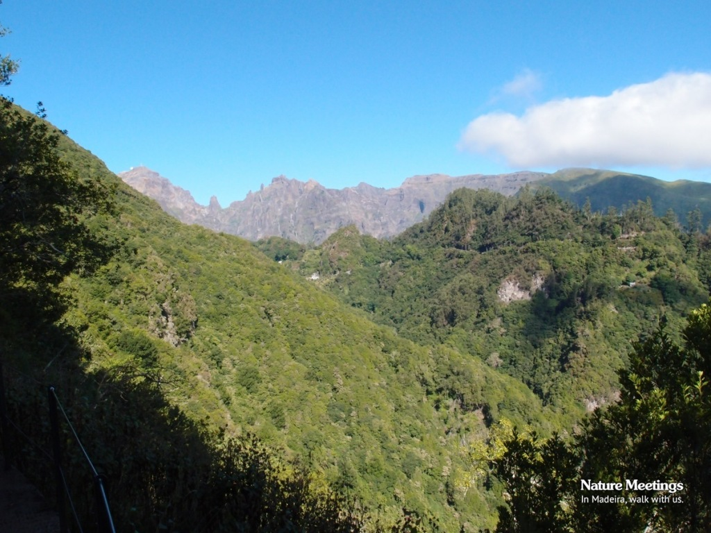 Ribeiro Frio Portela - View of the Peaks