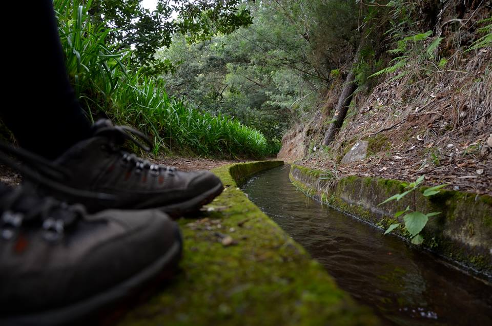 Madeira Levada Walks Official by Francisco Correia