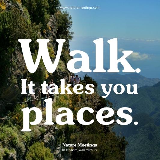 Madeira Levada Walks - The Peaks