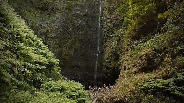 Madeira Levada Walks - Eurosport