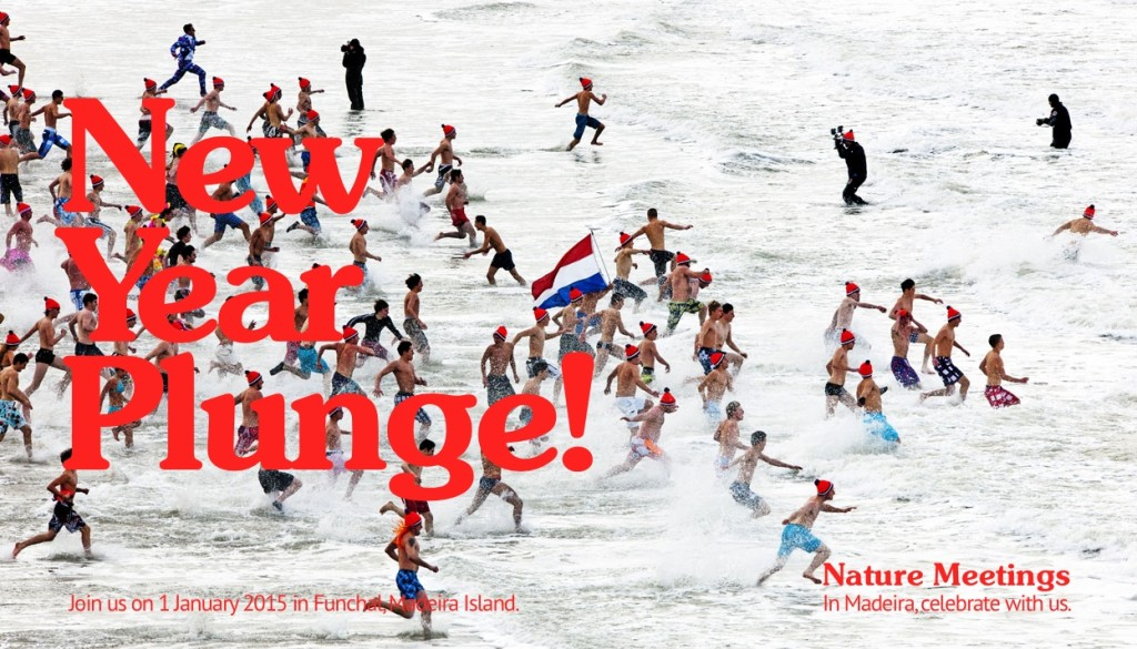 Madeira New Year Plunge 2015 by Nature Meetings